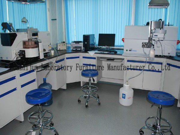 Chemical Lab Cabinet Manufacturer / Lab Wall Work Counter China / Laboratory Counters Price